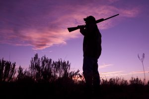 outfitter and guide insurance