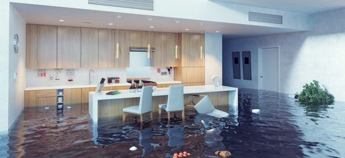 Flood Insurance in Your Forecast